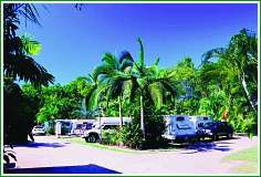 Tropical Hibiscus Caravan Park - Accommodation Georgetown