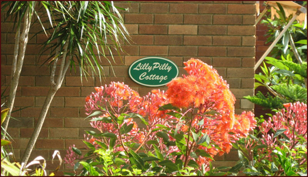Lillypilly - Accommodation Georgetown