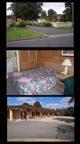 Ace Swan Motel - Accommodation Georgetown