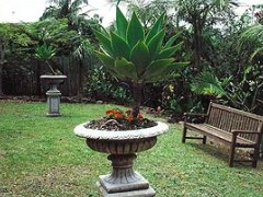 Bangalow Retreat - Accommodation Georgetown