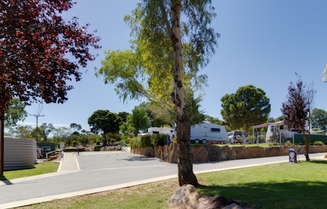 Avoca Dell Caravan Park - Accommodation Georgetown