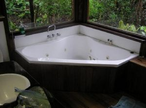 The Canopy Rainforest Tree Houses and Wildlife Sanctuary - Accommodation Georgetown