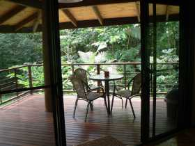 Cape Trib Exotic Fruit Farm Bed and Breakfast - Accommodation Georgetown