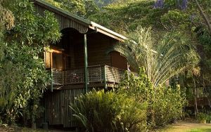 Bloomfield Lodge - Accommodation Georgetown