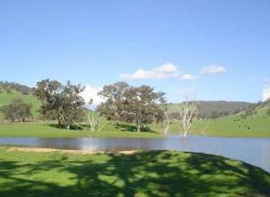 Hillview Farmstay - Accommodation Georgetown