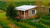 Borrodell Vineyard - Accommodation - Accommodation Georgetown