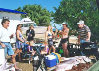Shark Bay Cottages - Accommodation Georgetown