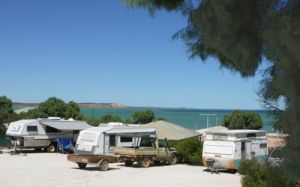Blue Dolphin Caravan Park and Holiday Village - Accommodation Georgetown