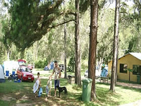 Glasshouse Mountains Holiday Village - Accommodation Georgetown