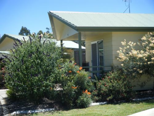 Pepper Tree Cabins - Accommodation Georgetown