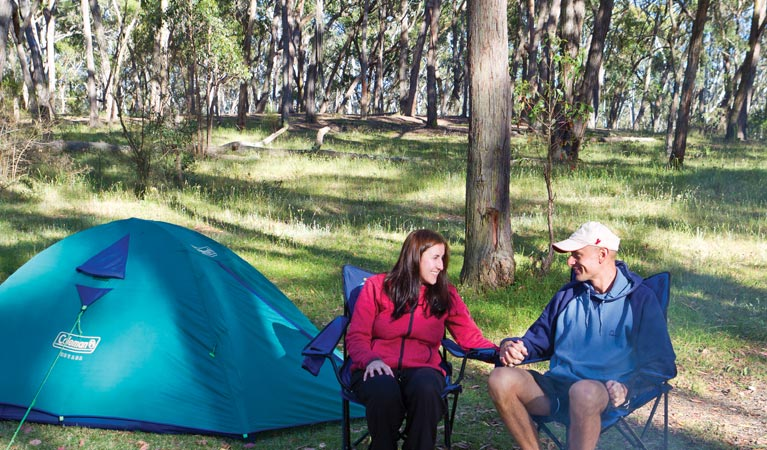 Apsley Falls campground - Accommodation Georgetown