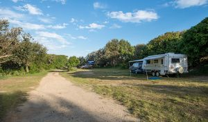 Racecourse Campground - Accommodation Georgetown