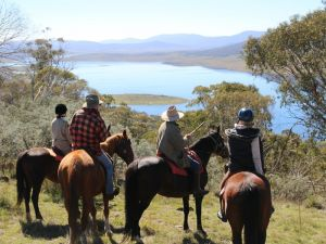 Reynella Homestead and Horseback Rides - Accommodation Georgetown
