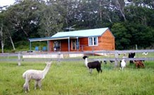 Moorallie Cottage Farm Stay - Accommodation Georgetown