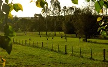 Stone Cottage Mittagong - Accommodation Georgetown