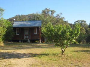 Peach Tree Cabin - Accommodation Georgetown