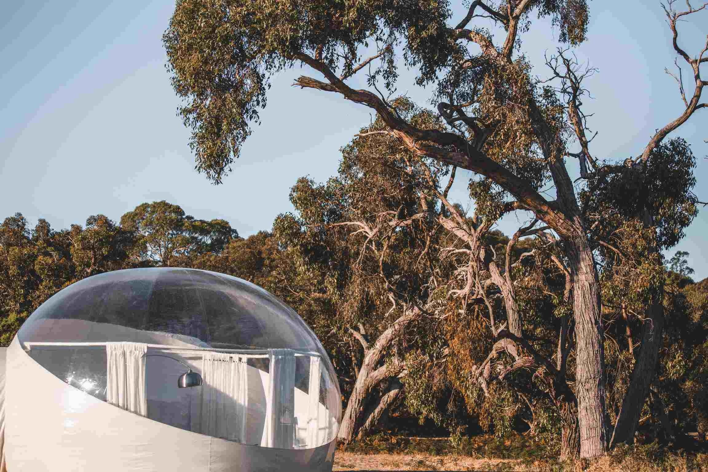Coonawarra Bubble Tents - Accommodation Georgetown