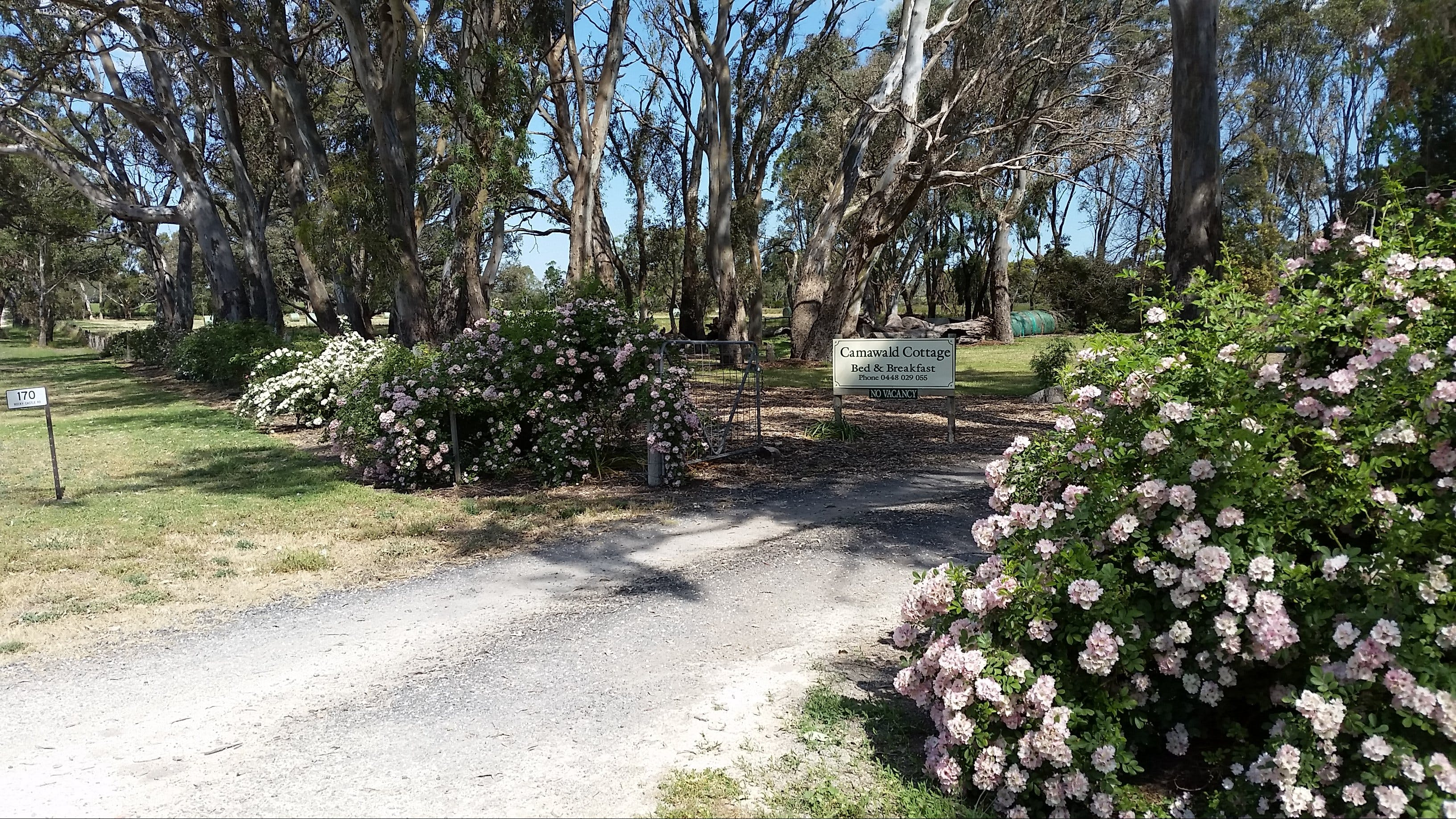 Camawald Coonawarra Cottage BB - Accommodation Georgetown