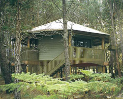 Possums Hideaway - Accommodation Georgetown