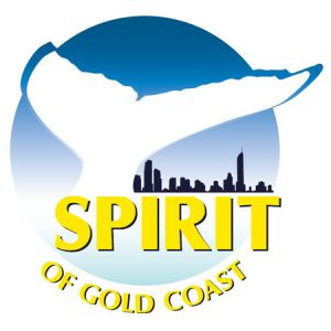 Spirit of Gold Coast Whale Watching - Accommodation Georgetown