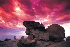 Kangaroo Island Adventure Tour 2 day/1 night - Accommodation Georgetown