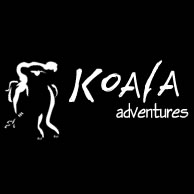 Koala Adventures - Accommodation Georgetown