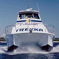Sunshine Coast Fishing Charters - Accommodation Georgetown