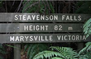 Stevensons Falls - Accommodation Georgetown