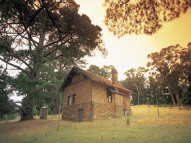 Heysen - The Cedars - Accommodation Georgetown