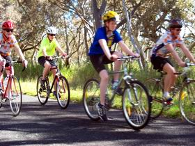 Penola Cycling Trails - Accommodation Georgetown