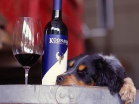 Koonara Wines - Accommodation Georgetown
