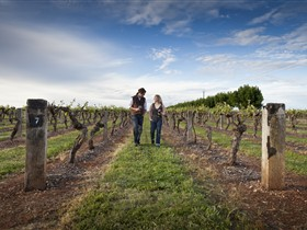 Coonawarra Wineries Walking Trail - Accommodation Georgetown