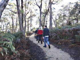 Bridport Walking Track - Accommodation Georgetown
