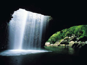 Natural Bridge Springbrook National Park - Accommodation Georgetown