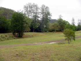Brooyar State Forest - Accommodation Georgetown
