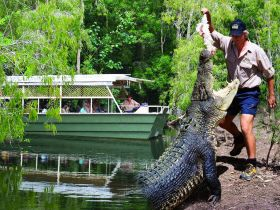 Hartleys Crocodile Adventures - Accommodation Georgetown
