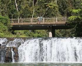 Malanda Falls Conservation Park - Accommodation Georgetown