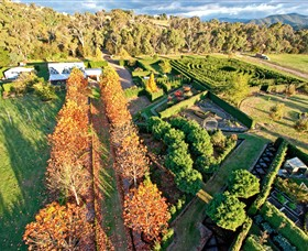 High Country Maze - Accommodation Georgetown