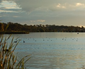 Lake Inverell Reserve - Accommodation Georgetown