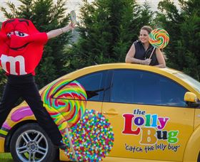The Lolly Bug - Accommodation Georgetown