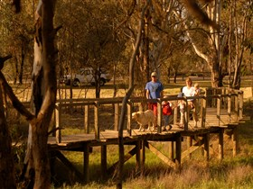 Loxton's Drives Walks and Trails - Accommodation Georgetown