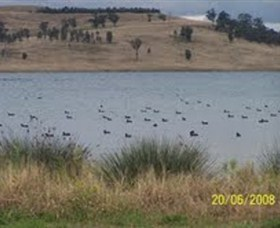 Lake Liddell Recreation Area - Accommodation Georgetown
