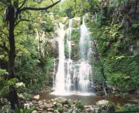 Budderoo National Park - The Falls Walk - Accommodation Georgetown