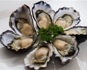 Tathra Oysters - Accommodation Georgetown