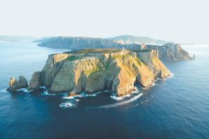 3-Hour Tasman Peninsula Wilderness Cruise from Port Arthur - Accommodation Georgetown