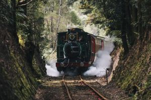 West Coast Wilderness Railway River and Rainforest from Strahan - Accommodation Georgetown