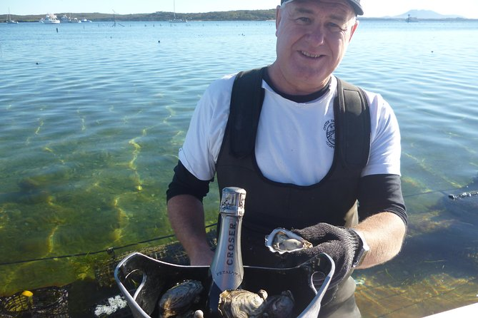 Coffin Bay Oyster Farm  Tasting Tour - Accommodation Georgetown