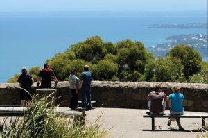 Arthurs Seat State Park - Accommodation Georgetown