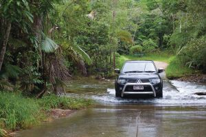 The Pioneer Valley and Eungella National Park - Accommodation Georgetown