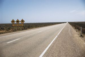 Eyre Highway - Accommodation Georgetown